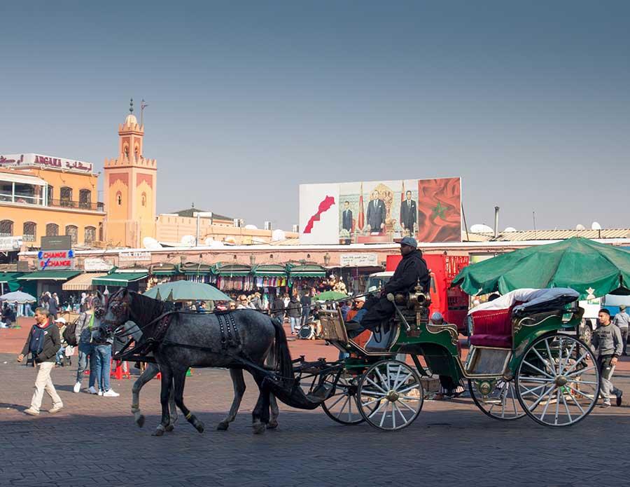 Carro de caballos en la plaza Jemaa el Fna durante el día
