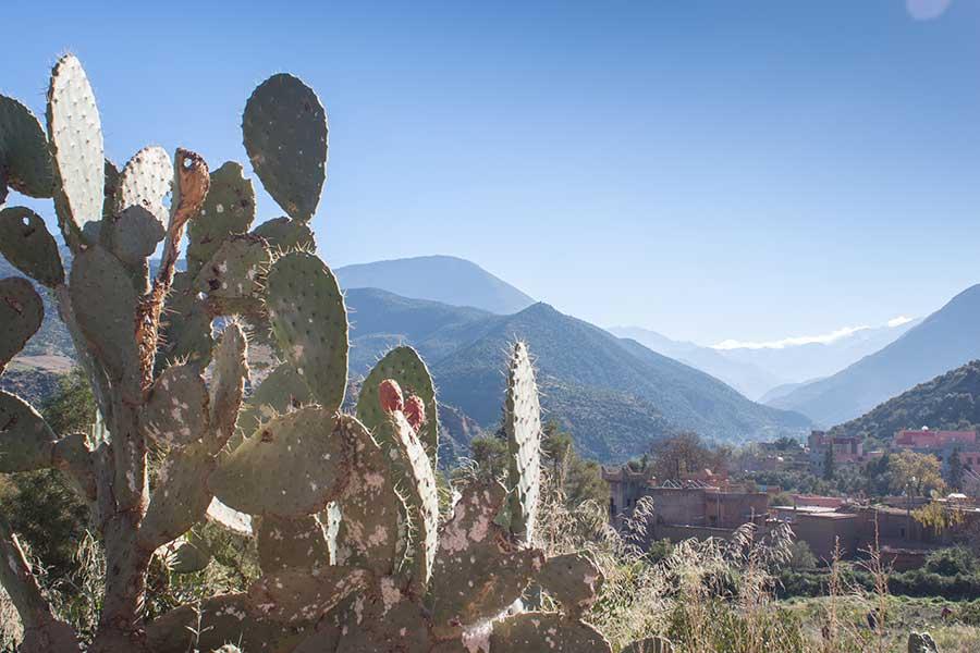 Aldea bereber en el valle de Ourika
