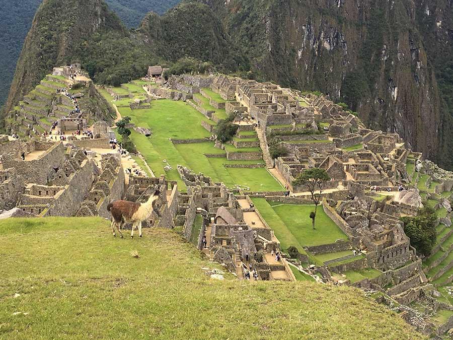 Imagen de la llaqta de Machu Picchu