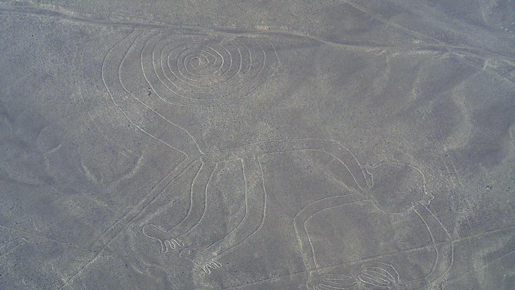 foto de la figura del mono en las líneas de Nazca