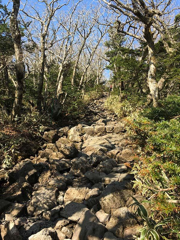 Camino de piedra en la ruta de Seongpanak en Hallasan